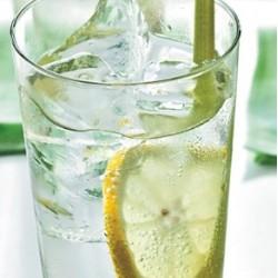 Eko sirup limonska trava - kopriva 0,25l